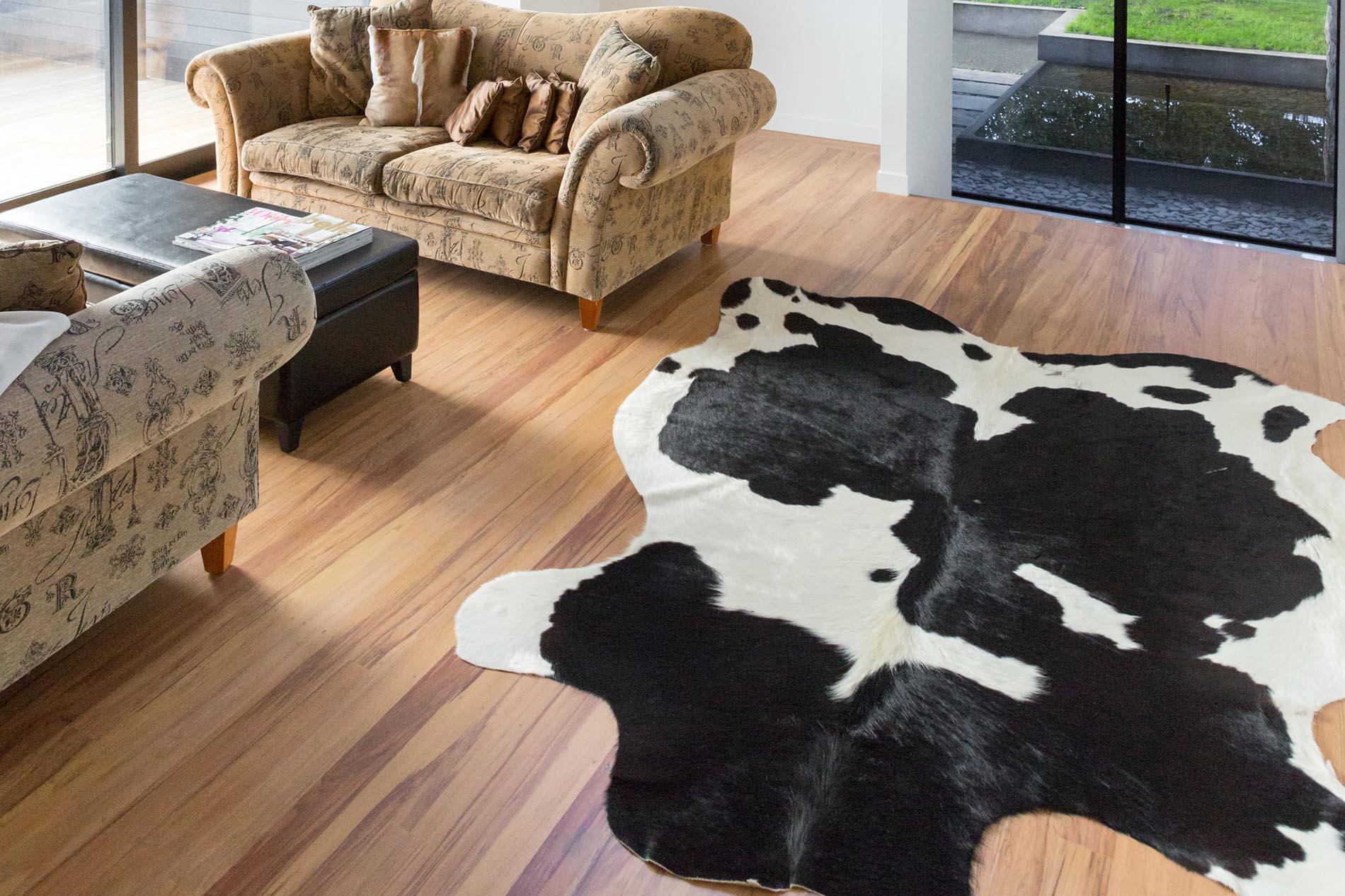 carpet cleaners Dunedin